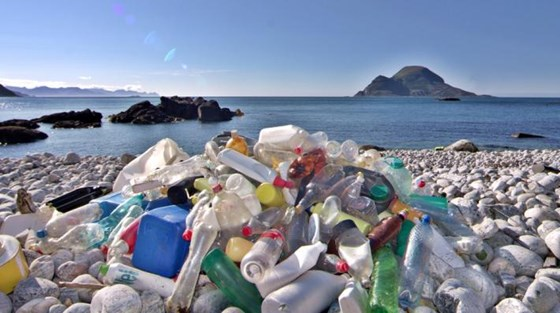 Norway has earmarked funds to support UNEP's efforts to combat marine pollution. Credit: UNEP
