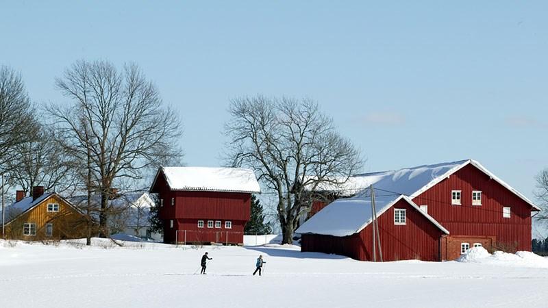 Odelsloven gir bestemte arvinger fortrinnsrett til å overta en landbrukseiendom når eieren selger eiendommen eller dør.