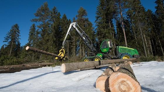Skogsmaskin i aksjon.