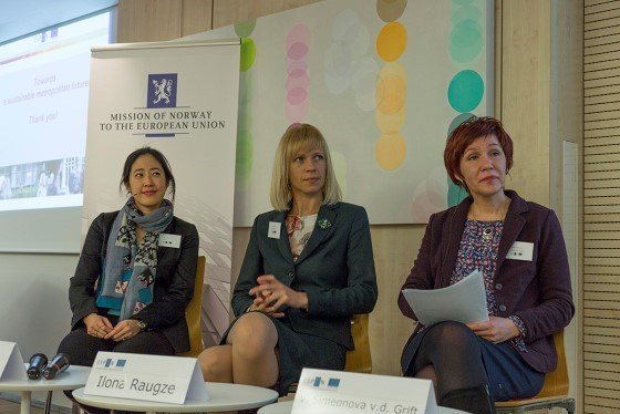 Soo Jin Kim, OECD, Ilona Raugze, ESPON, Vanya Simeonova van der Grift, Wageningen Environmental Research
