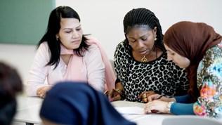 tjenester skole voksenopplaring basiskompetanse i arbeidslivet