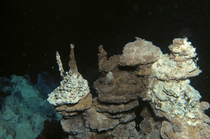 Figure 3.8 These 'black smokers' on the Mid-Atlantic Ridge between Jan Mayen and Bjørnøya are hydrothermal vents formed by the deposition of metal-rich sulphide minerals.