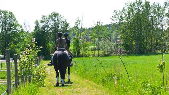 Barn på hest.
