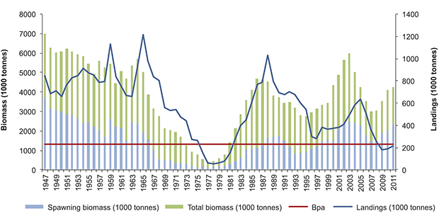 Figure 3.12 Changes in the spawning stock and catches of North Sea herring, 1947–2011. Bpa: precautionary spawning stock reference point.