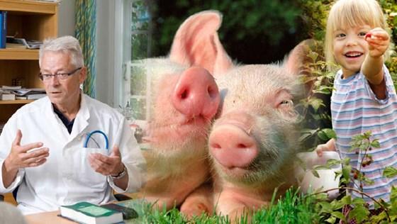 Forside: Nasjonal strategi mot Antibiotikaresistens 2015–2020.