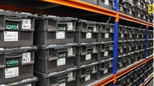 Seeds from Svalbard Global Seed Vault to replace Alleppo gene bank.