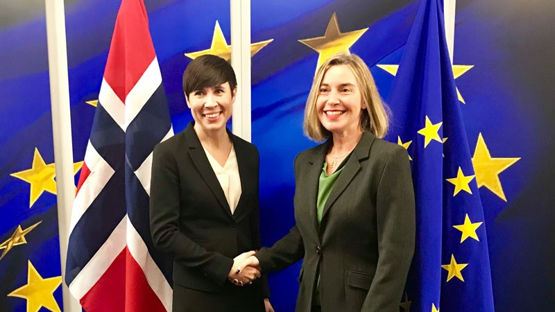 Norway in Europe  The Norwegian Government's strategy for