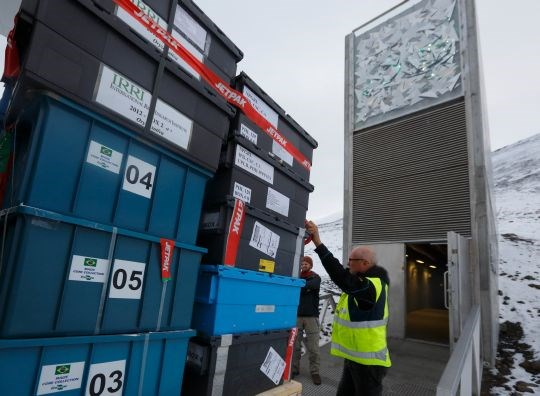 Seed boxes from Brazil and 16 other countries arrive at the vault