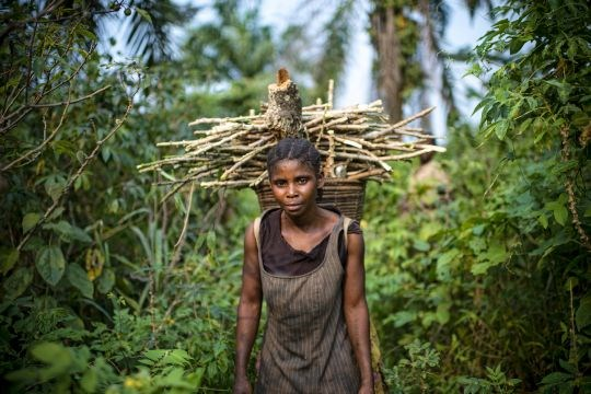 Congo Basin Natural Resources