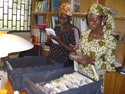 Genebank staff checking accession number as they are packed in shipment box. Photo: IITA